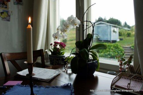 orkidea ja kynttilä