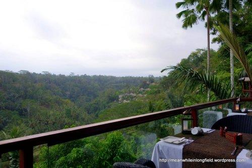 Bali Ubud La View (2)