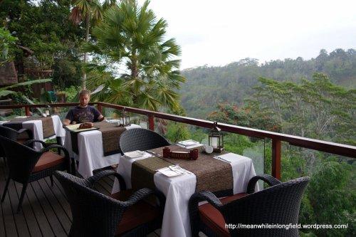 Bali Ubud La View (3)