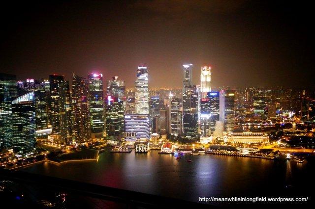 singapore marina bay sands infinity pool (11)