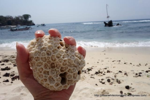 nusa lembongan bali mushroom beach (5)