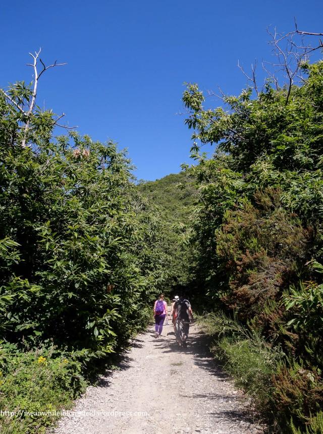 monte pisano loop tuscany (13)