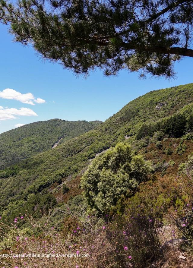 monte pisano loop tuscany (4)