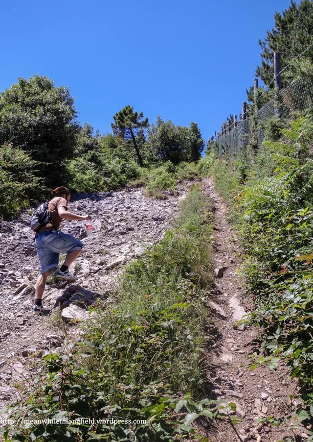 monte pisano loop tuscany (5)