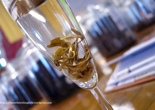 forsman tea teekoulutus (7)