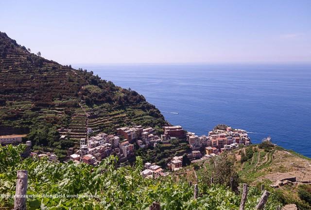 cinque terre_hike (21)