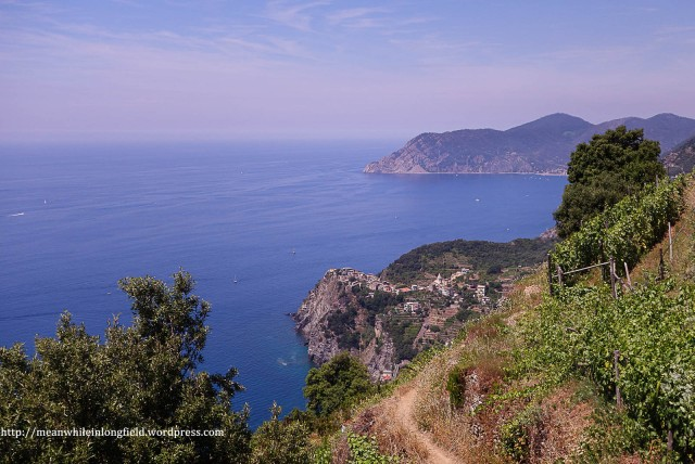 cinque terre_hike (23)