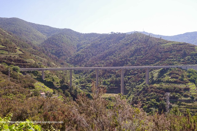 cinque terre_hike (4)