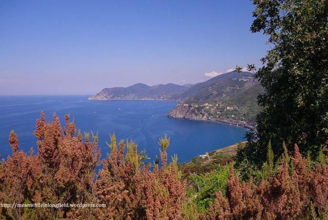 cinque terre_hike (6)